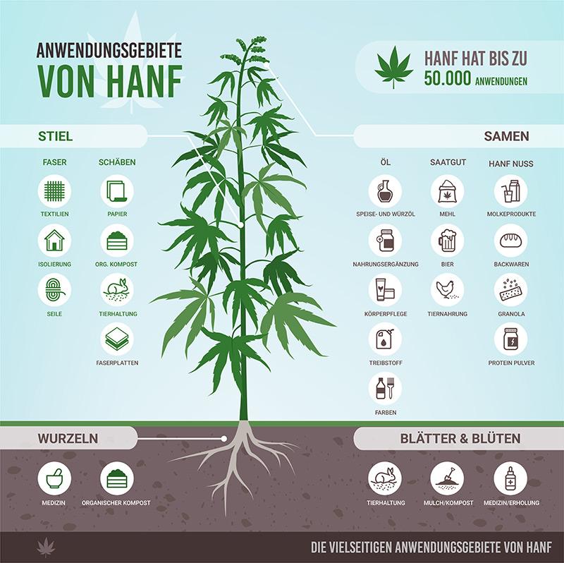 Anwendungsgebiete von Cannabis